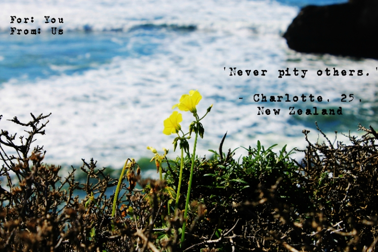 Blog20- Charlotte